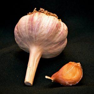 Organic German Red Garlic Seed