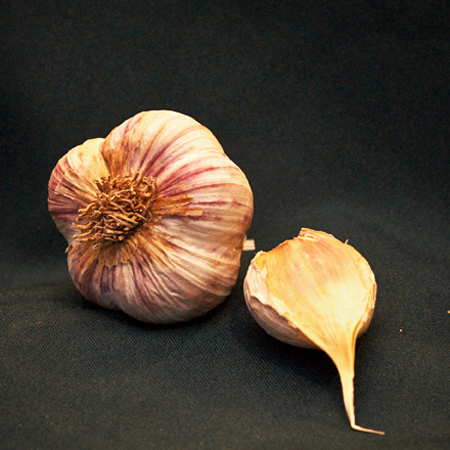 Organic Metechi Garlic Seed